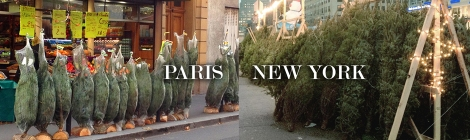ny vs paris trees