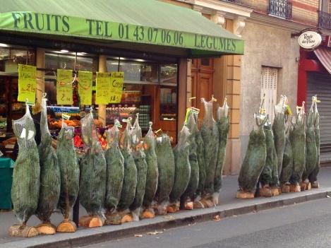 trees paris2