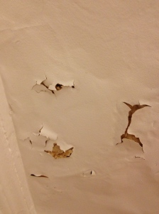 Ever-increasing damage in my little Paris place. But the real culprit is MOLD. I can't go near the stuff.