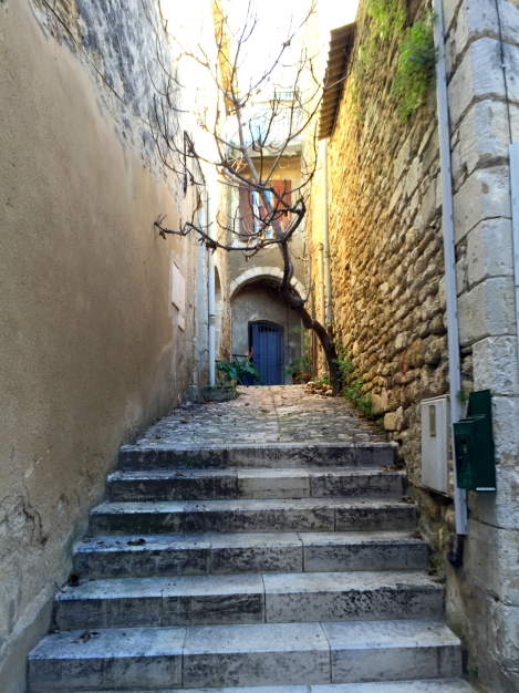 A sweet alley in Ménerbes, the town Peter Mayle made famous. ©Lisa Anselmo