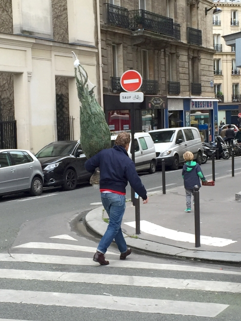 A man and his son snag their tree. ©Lisa Anselmo